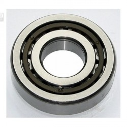 500367 PINION BEARING