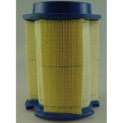 Cartucho filtro del aire