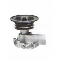 Bomba de agua DS